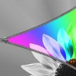 La balance des couleurs dans une photographie: comment faire?