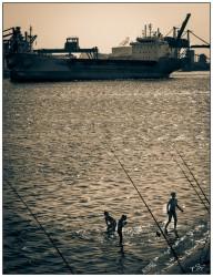 Personnes se baignant sur la côte