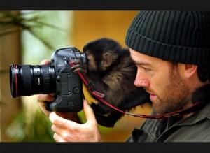 Singe apprenant la photographie